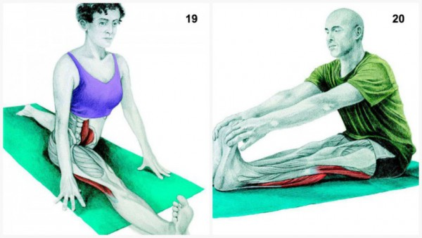 36-pictures-to-see-which-muscle-youre-stretching10-600x338