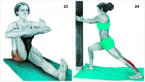 36-pictures-to-see-which-muscle-youre-stretching12-600x338