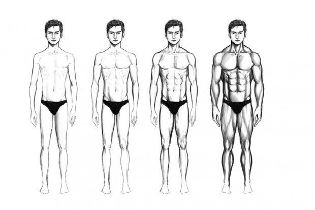 male_body_types_by_chaosbringer99-d4mql6q
