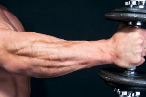 Muscles-Of-The-Forearm