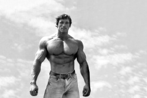 20925-arnold-schwarzenegger-1366x768-male-celebrity-wallpaper