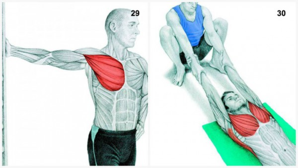 36-pictures-to-see-which-muscle-youre-stretching15-600x338
