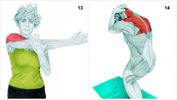 36-pictures-to-see-which-muscle-youre-stretching7-600x338